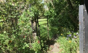 Imagining a New Stoneford Garden