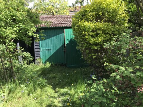 Stoneford Cottage: Imagining a New Stoneford Garden