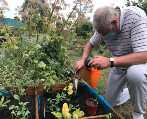Grow Club member Steve, keeping his distance, and keeping the raised beds happy.
